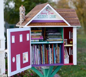 Little Free Library Smaple 1