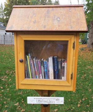 Little Free Library Sample 2