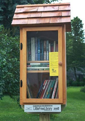 Little Free Library Sample 3